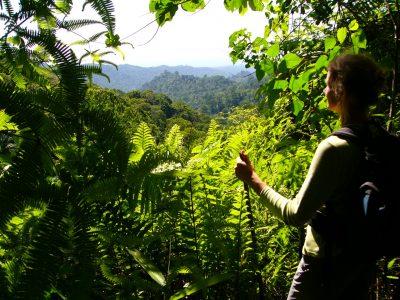 Aktivurlaub auf Sao Tome und Principe -Obo Nationalpark - Sao Tomé e Principe - Rundreise