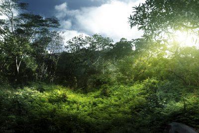 Uganda Rundreise -Sonnenuntergang - Queen Elizabeth National Park - Uganda