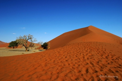 Düne 45 im Sossusvlei, Namibia