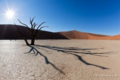 Sossusvlei in der Namib-Wüste