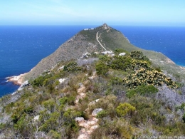 Wanderweg am Cape Point