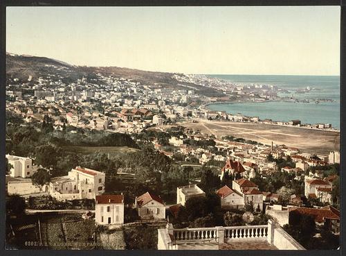 Der Blick übers spannende Algier