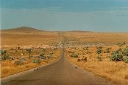 Straße in Madagaskar ©Mohr    www.bennymo.ch