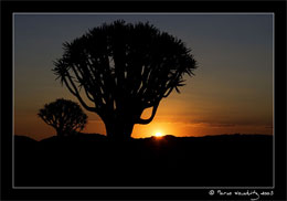 Sonnenuntergang, Namibia © Marco Woschitz www.woschitz.net