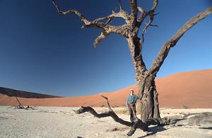 Namib - die älteste Wüste der Welt